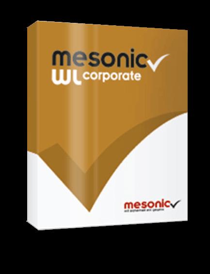 Mesonic WL